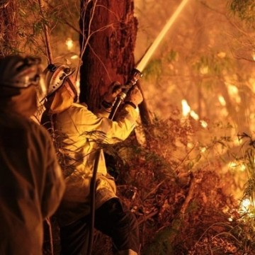 Firefighters battle the Northcliffe blaze. Photo: Department of Fire and Emergency Services