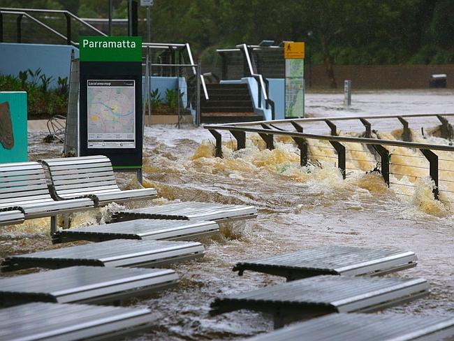 erry services were cancelled at Parramatta after the weir flooded.