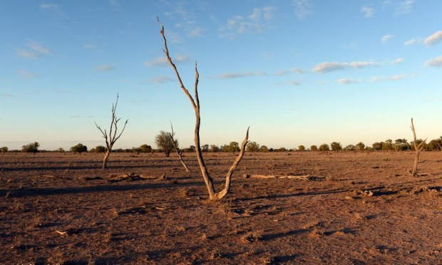 Of the 26 El Ninos since 1900, 17 have resulted in widespread drought. Photograph: Dan Peled/AAP
