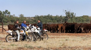 Workers from the Anna Creek cattle ranch take a break from work on the Oodnadatta Track. William West/AFP/Getty Images