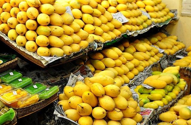 pak-mango-export