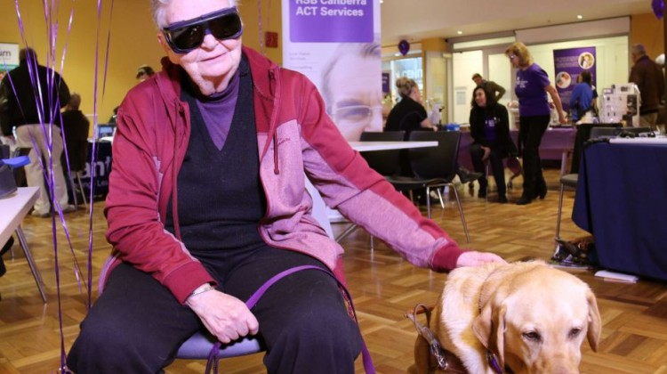 Anna Saxon said along with her guide dog Elska, advances in technology were allowing her to give back to the Canberra community. Photo: ABC News/Elise Pianegonda