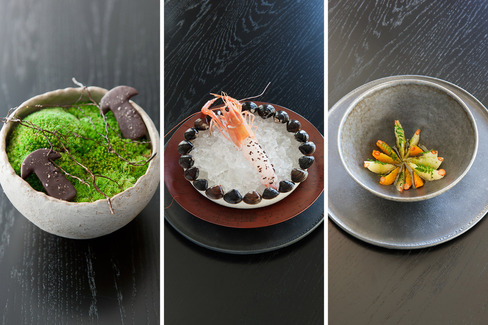 Food of Noma restaurant in Sydney
