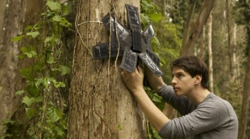 How smartphones can help monitor and prevent illegal deforestation