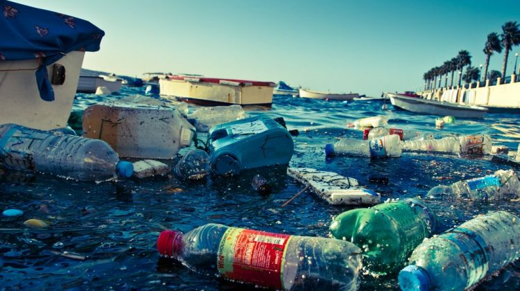 World Oceans Day 2016 focuses on reducing plastic waste to save the planet