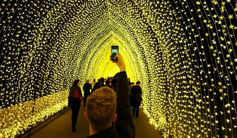 A visitor to the Sydney Botanical Garden's inaugural contribution to the Vivid Sydney light festival takes a picture of the 'Cathedral of Light' during a preview of the annual interactive light installation and projection event around Sydney, Australia May 25, 2016. Photo by Jason Reed/Reuters