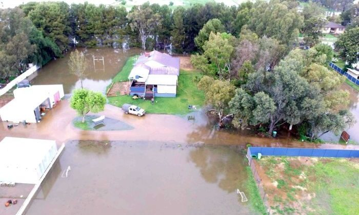 Katie Drady's Forbes property is one of many that has been submerged by flood. (Supplied: Katie Drady)