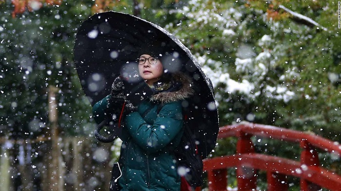 Tokyo wakes up to first November snow in over 50 years