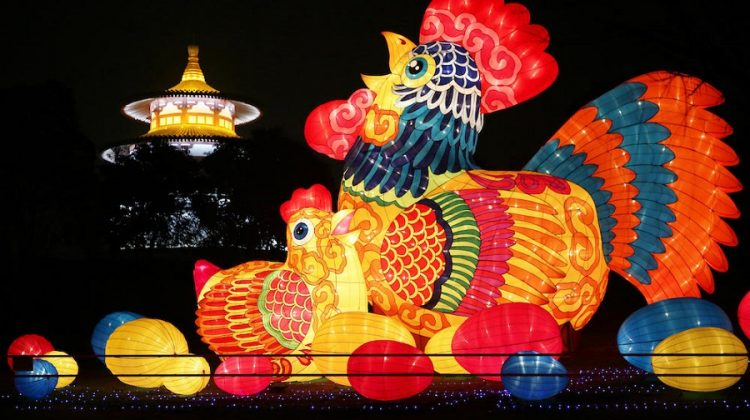 Chinese New Year 2017, year of the Rooster